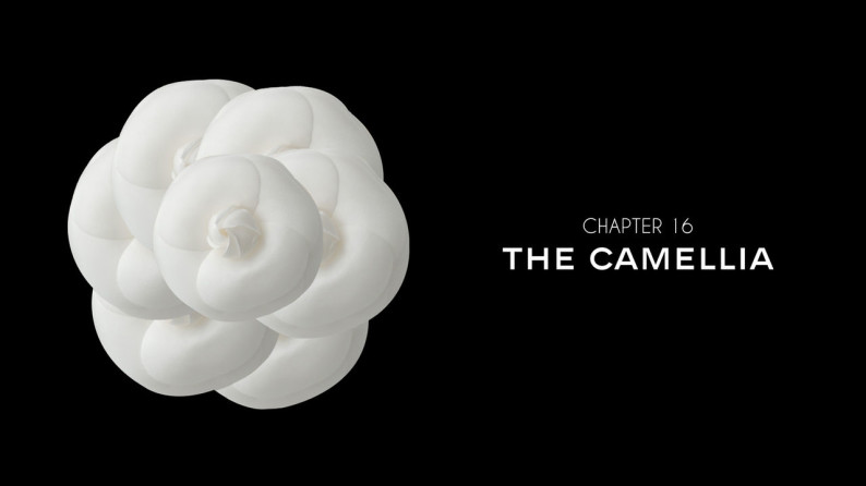 Chanel: la Camelia