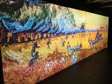 Schermo proiettore opere artista - mostra Van Gogh